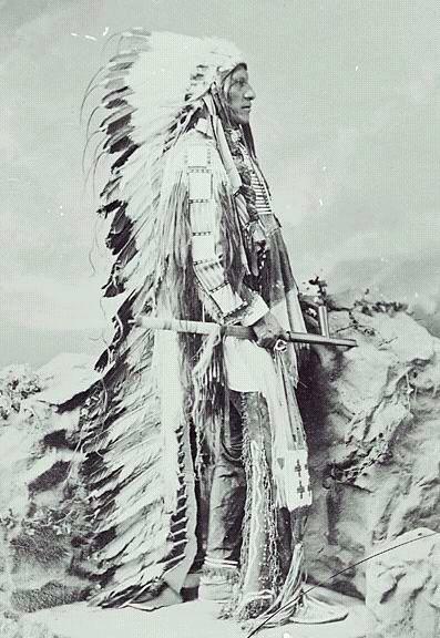 http://www.american-tribes.com/messageboards/dietmar/1877AmericanHorse.jpg