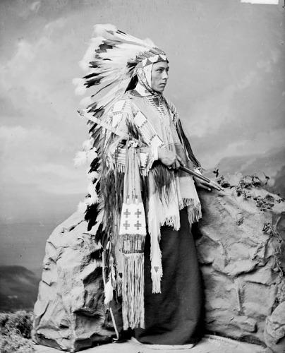 http://www.american-tribes.com/messageboards/dietmar/1877WilliamGarnett.jpg