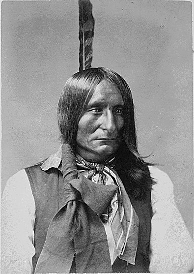 http://www.american-tribes.com/messageboards/dietmar/BlackCrow1.jpg