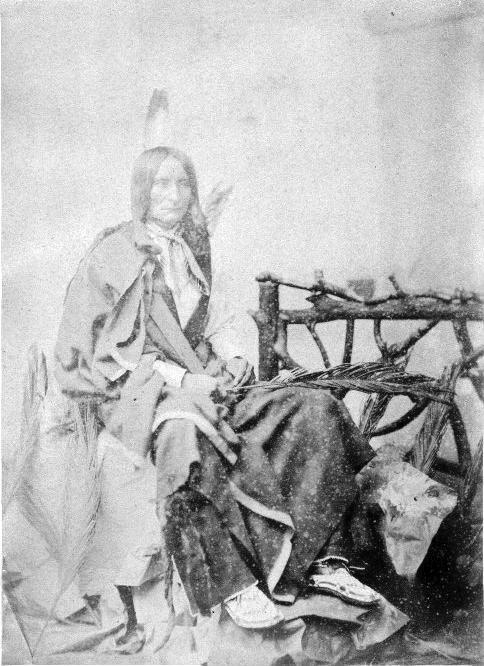 http://www.american-tribes.com/messageboards/dietmar/BlackCrow3.jpg