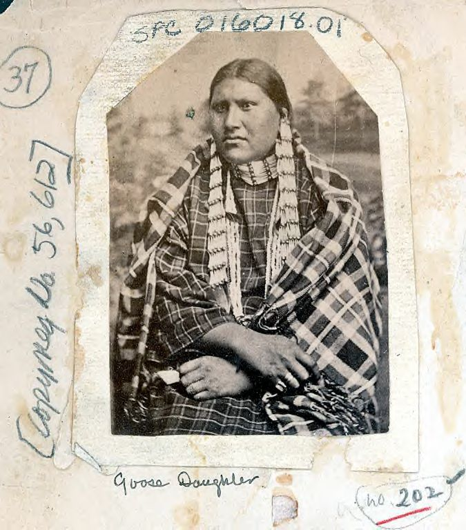 http://www.american-tribes.com/messageboards/dietmar/GooseDaughter.jpg