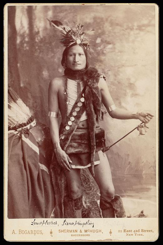 http://www.american-tribes.com/messageboards/dietmar/LovesHorses.jpg