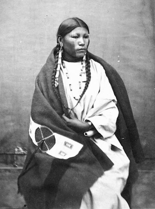 http://www.american-tribes.com/messageboards/dietmar/PrettyHorse.jpg