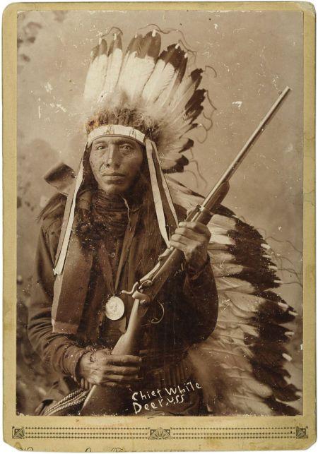 http://www.american-tribes.com/messageboards/dietmar/WhiteDeer.jpg