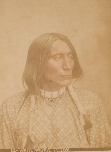 http://www.american-tribes.com/messageboards/dietmar/WhiteMagpie.jpg
