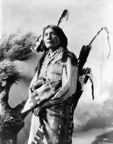 http://www.american-tribes.com/messageboards/dietmar/YellowWolf.jpg