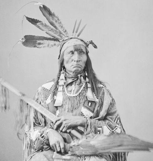 http://www.american-tribes.com/messageboards/dietmar/bellyfat1.jpg