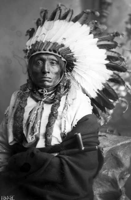 http://www.american-tribes.com/messageboards/dietmar/croweagle.jpg