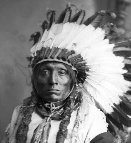http://www.american-tribes.com/messageboards/dietmar/croweagle1.jpg