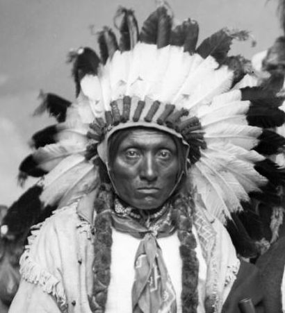 http://www.american-tribes.com/messageboards/dietmar/croweagle2.jpg
