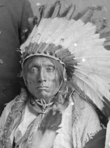 http://www.american-tribes.com/messageboards/dietmar/croweagle3.jpg