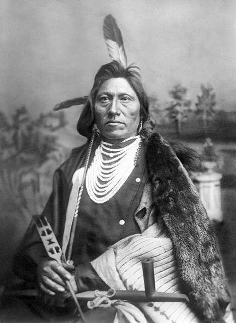 http://www.american-tribes.com/messageboards/dietmar/goose.jpg