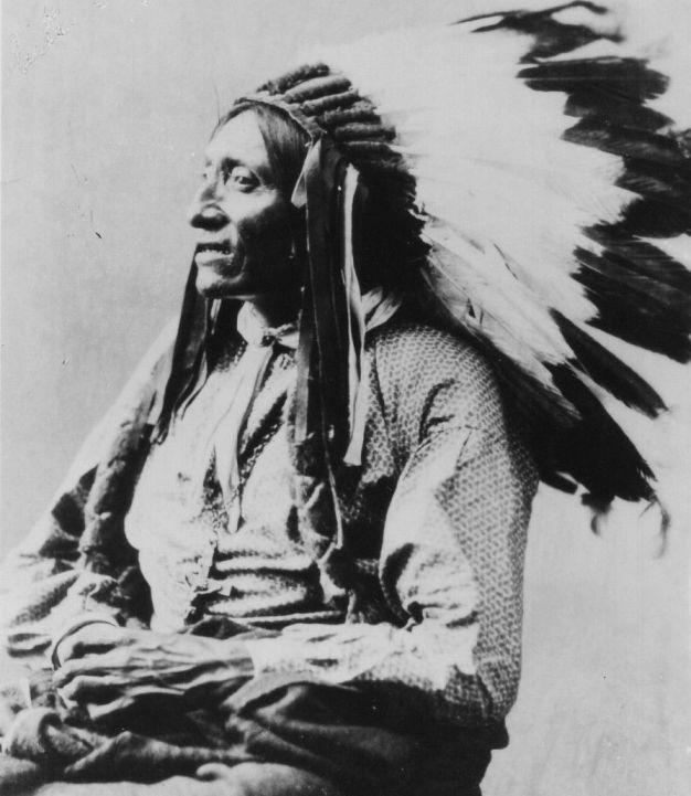 http://www.american-tribes.com/messageboards/dietmar/grayeagle2.jpg
