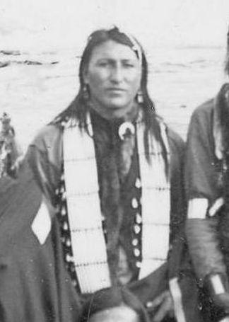 http://www.american-tribes.com/messageboards/dietmar/niagaraBlackFox.jpg