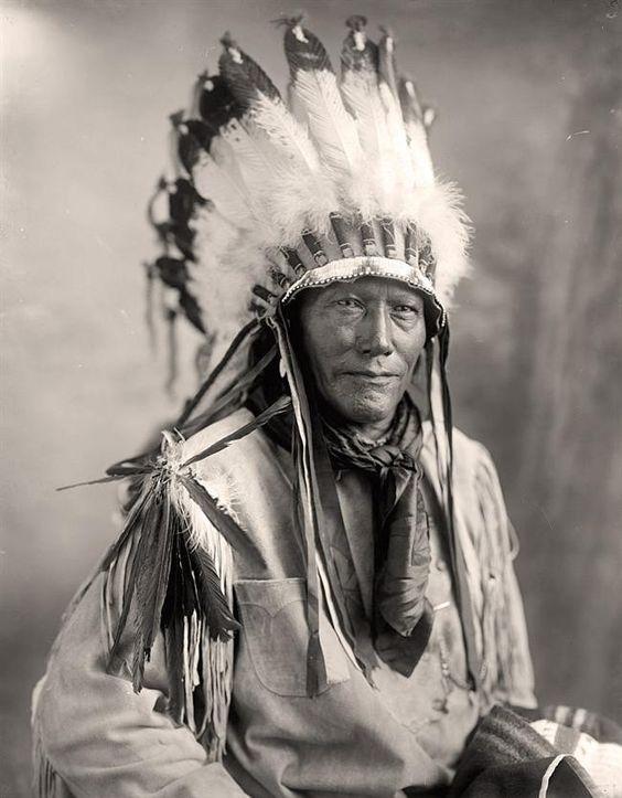http://www.american-tribes.com/messageboards/dietmar/porcupinecheyenne.jpg