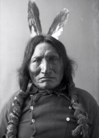 http://www.american-tribes.com/messageboards/dietmar/redhorse1.jpg