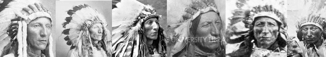 http://www.american-tribes.com/messageboards/dietmar/turningbearcomparison.jpg