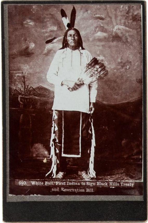 http://www.american-tribes.com/messageboards/dietmar/whitebull4.jpg