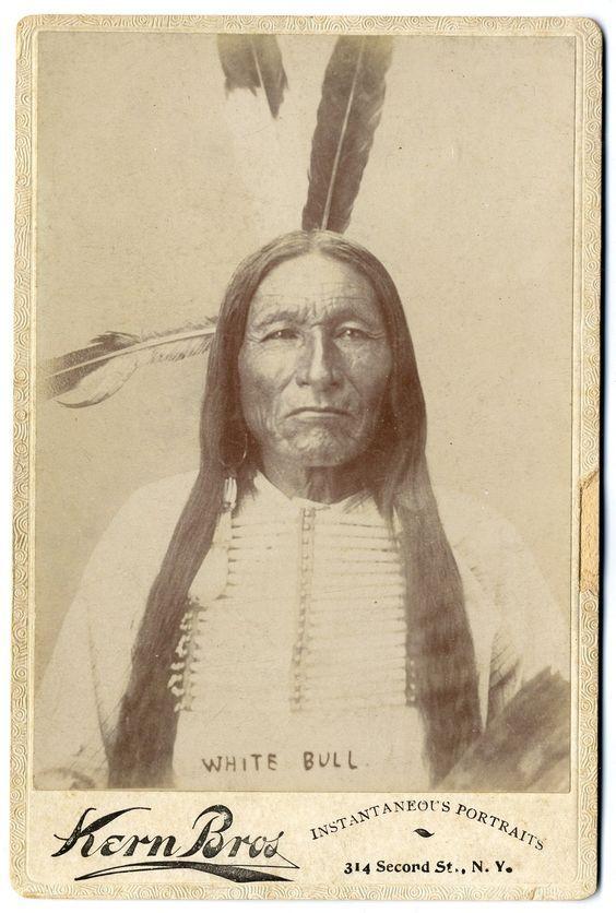 http://www.american-tribes.com/messageboards/dietmar/whitebull5.jpg