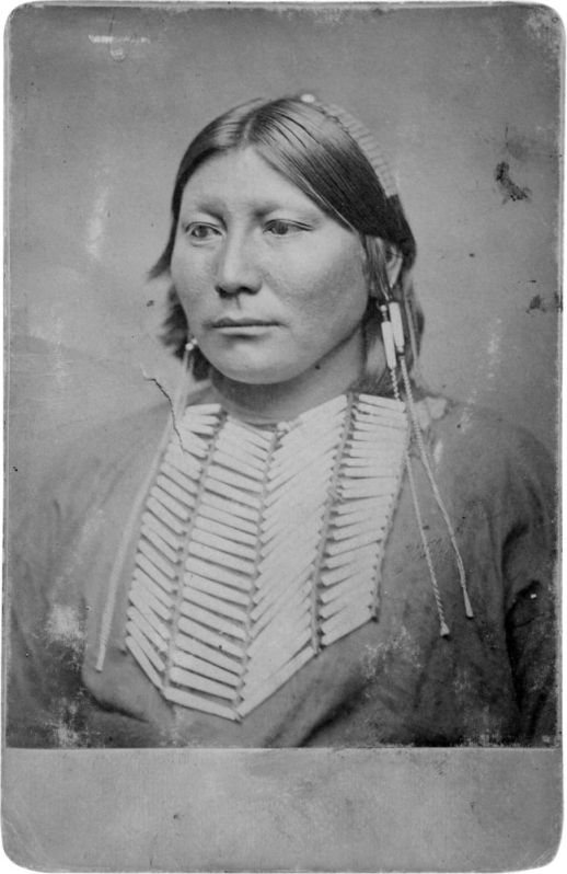 http://www.american-tribes.com/messageboards/dietmar/whitehorse3.jpg
