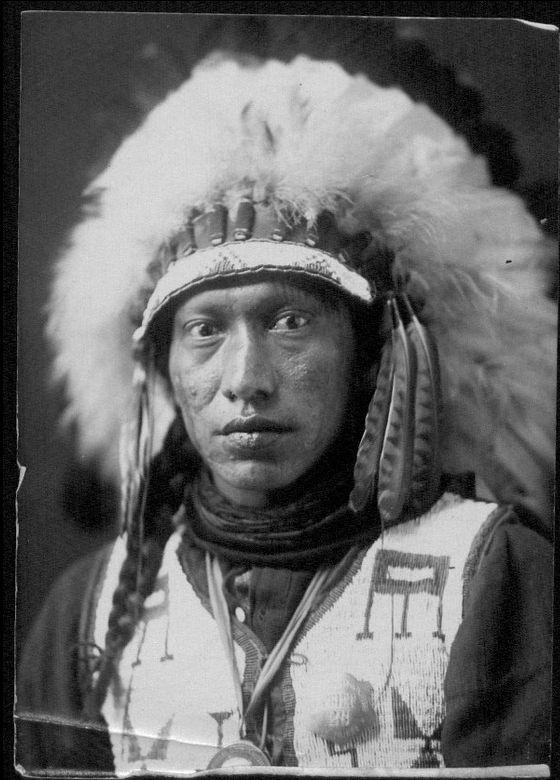 http://www.american-tribes.com/messageboards/dietmar/williamsittingbull.jpg