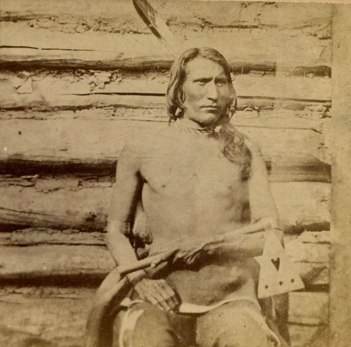 http://www.american-tribes.com/messageboards/dietmar/yellowbull.jpg