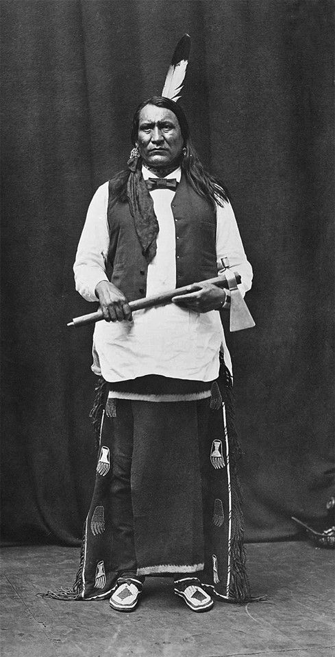 http://www.american-tribes.com/messageboards/dietmar/yellowbull3.jpg