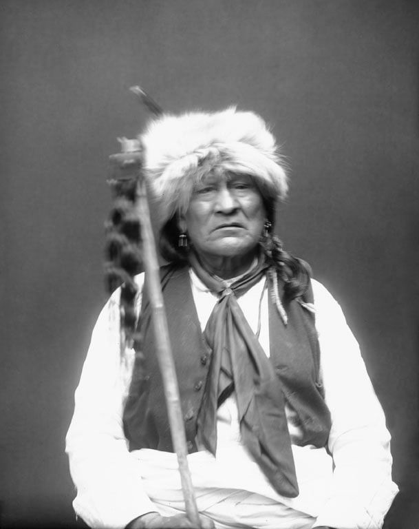 http://www.american-tribes.com/messageboards/dietmar/yellowbull4.jpg