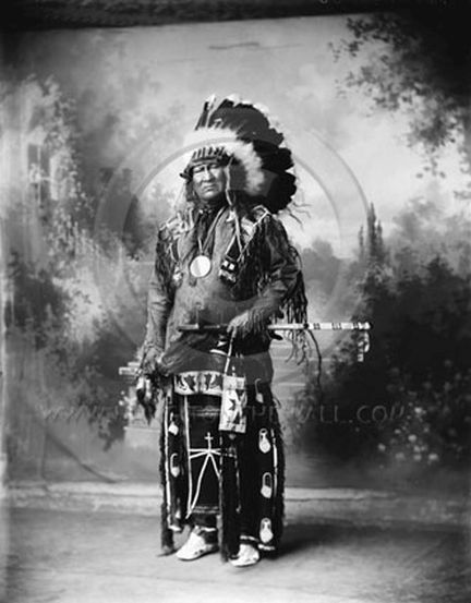 http://www.american-tribes.com/messageboards/dietmar/yellowbull6.jpg